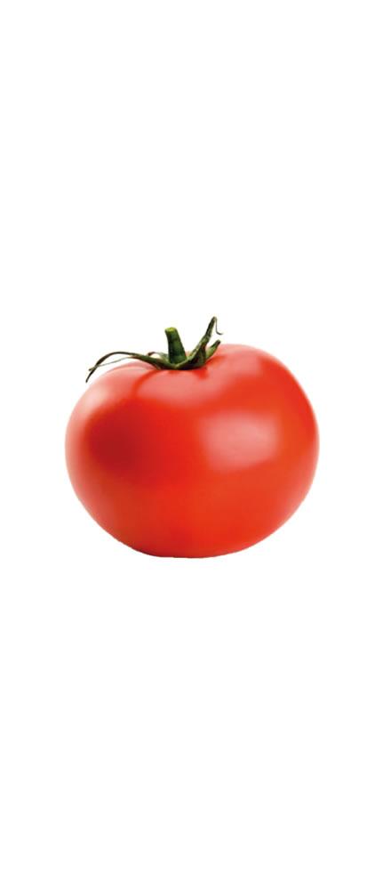 Tomate = BECO
